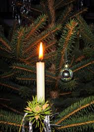 light on tree