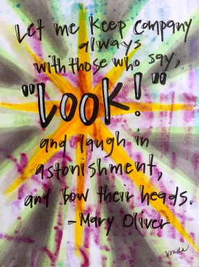 """look!"" by Vonda Drees and inspired by a quote from Mary Oliver"
