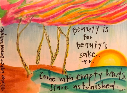 """for Beauty's sake,"" by Vonda Drees"